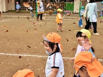 201127_落ち葉 (8).jpg
